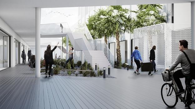 Imagen de Jardín y Terraza / Patio